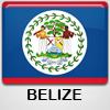 Logo .bz domain