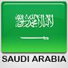 Logo .sa.com domain